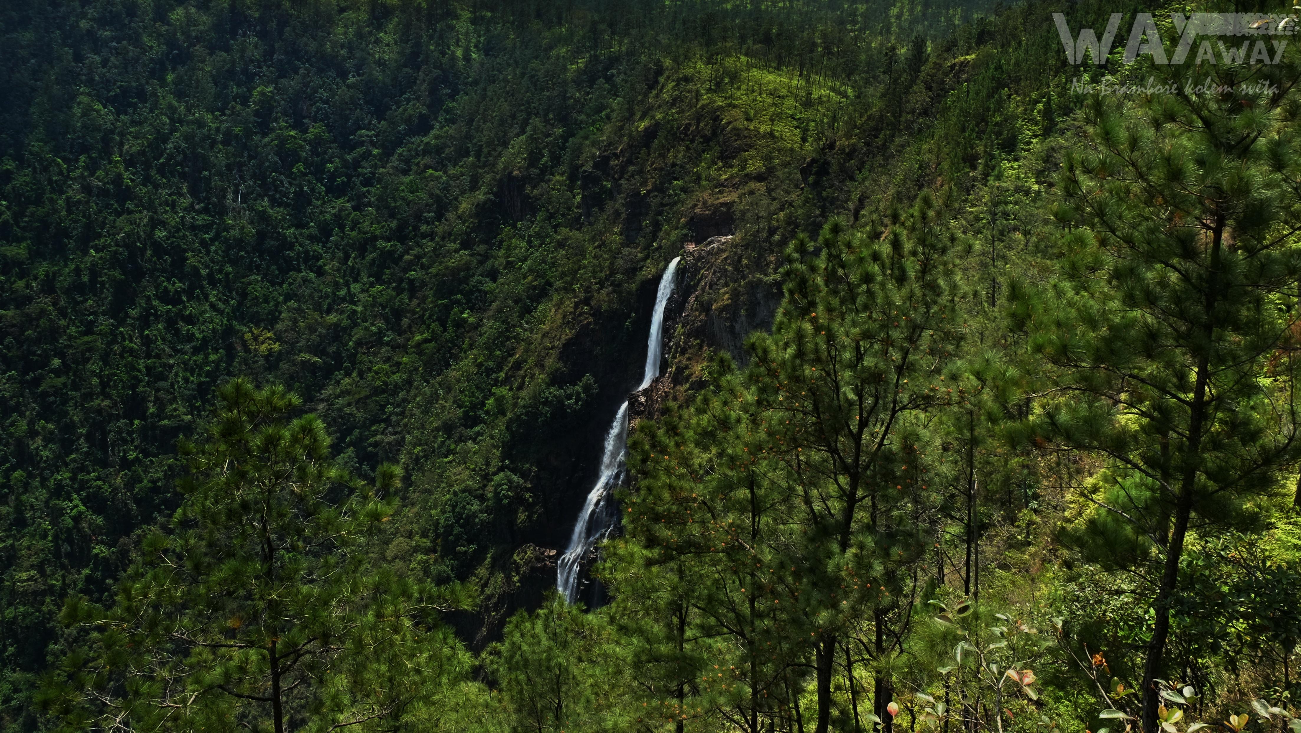 rezervace Mountain Pine Ridge, Belize, Střední Amerika