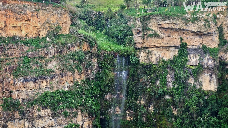Zelená Kolumbie